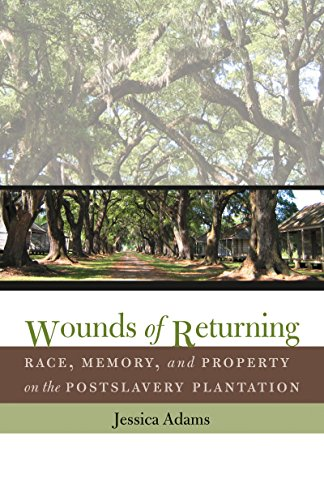 Wounds of Returning: Race, Memory, and Property on the Postslavery Plantation (New Directions in Southern Studies) (English Edition) (Ga State University)
