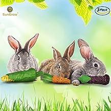 sungrow Masticar juguete para el conejo de la zanahoria