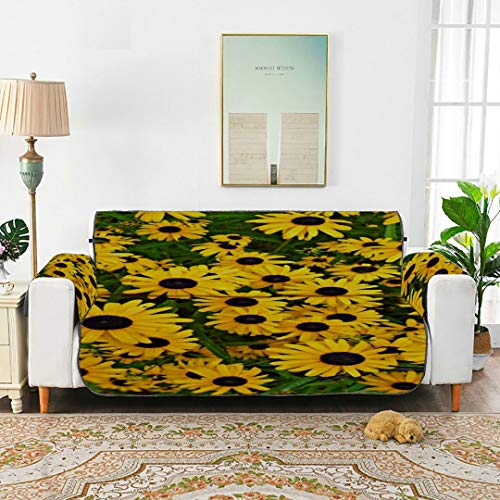 WDDHOME Black Eyed Susan Flower Yellow Daisy Summer Garden Lounge Lounge Slipcover...