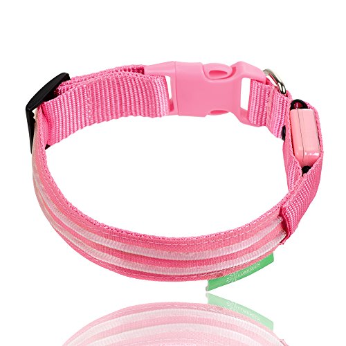 LED-Dog-Collar-USB-Rechargeable-Available-in-6-Colours-6-Sizes-Makes-Your-Dog-Visible-Safe-Seen-Pink-Medium-16--20-41--53cm