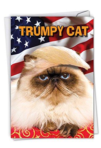 Trumpy Katze: Lustige Geburtstagskarte, mit Umschlag c4658bdg.