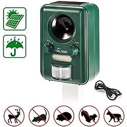 Volador, Solar/USB Alimentado Perros Ultrasónico, Impelente Repelente Jardin, Sensor de Movimiento y luz Intermitente Ahuyentador de Pajaros, Anti Gatos Ardillas, Green