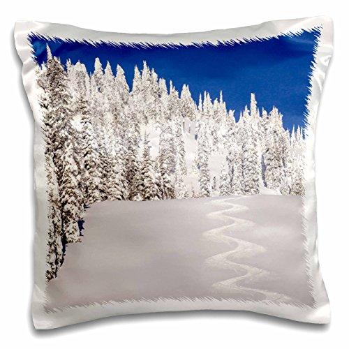 Danita Delimont - Winter - Montana, USA - Turn tracks off of Lodi - 16x16 inch Pillow Case (pc_207246_1)