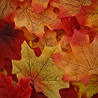 U&X 700Pcs Artificial Autumn Maple Leaves Mixed Fall Colored Leaf Great Autumn Table Scatters for Weddings, Events, Autumn Parties, Art Scrapbooking and Decorations (7 Colors)