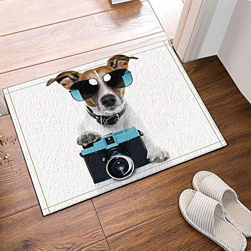 vrupi mit coolen blauen Sonnenbrillen und einem Kamera-Welpen-Badteppich rutschfeste Fußbodeneingänge Außen-Innentürmatte, 40 x 40 cm Badteppich Badteppich