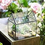 NCYP House Shape Close Glass Geometric Terrarium Wedding Centerpiece Tabletop Succulent Air Plants Planter Window Sill… 9