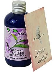 BIOPARK - Hydrolat de Tea Tree - Apaise la peau irritée, grasse et à imperfections - Idéal comme déodorant des pieds - Pour les piqûres d'insectes - 100 ml