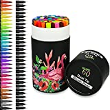 Best Brush Tip Markers - Color You 60 Colors Dual Tip Brush Pens Review