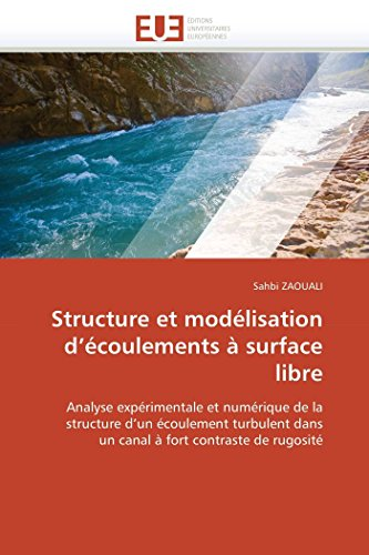 Structure et modélisation d écoulements à surface libre par Sahbi ZAOUALI