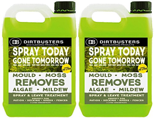 Dirtbusters Spray oggi Gone Tomorrow, 5 litri, verande, recinzione per la muffa, alghe, Licheni Moss Killer per la crescita, colore: verde - Moss Killer