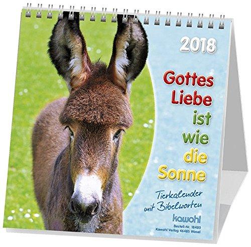 Preisvergleich Produktbild Gottes Liebe ist wie die Sonne 2018: Jubiläums-Postkarten-Kalender für Kinder mit Gedichten und Gebeten