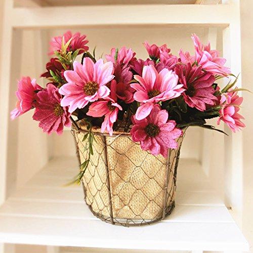 lumen und Pflanzen Sepia Vase mit Blumen aus Kunststoff im Europäischen Stil Daisy ()