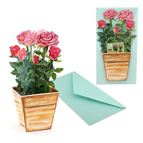 """""""BLUMENTOPF MIT ROSA-ROTEN ROSEN"""": 3 D Pop-Up-Karte mit einem Topf Rosen, die niemals verblühen – ideal als Geburtstagskarte oder Valentinskarte"""