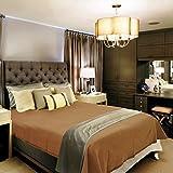 Raymond Home Woolen Double Blanket - Bro...