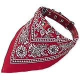 Nobby Halsband mit Tuch, rot, Länge 50 cm