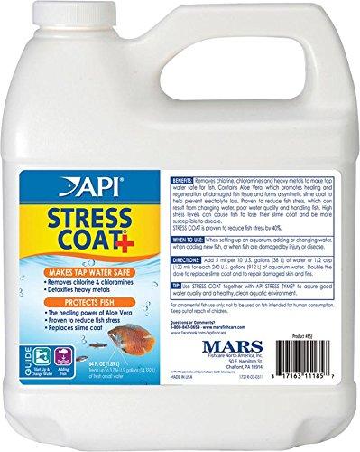 API Stress Coat 1.9L Test