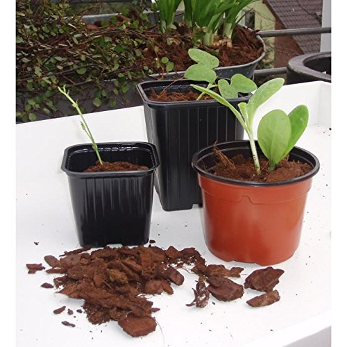 Lot de 7 pots bouturage polystyrene 9x7x9,5 cm