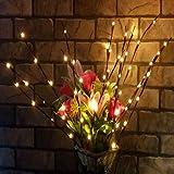 Anstsy LED Willow Branch Lights Indoor Floral Lights Decorazione Natalizia per Feste Nataliz Luci per Interni