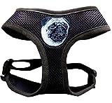 Hundegeschirr Brustgeschirr Geschirr für Mops schokobraun mit Stickerei verstellbar für einen Halsumfang von 37 cm - 43 cm, für einen Brustumfang von 47 cm - 65 cm