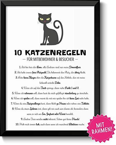 Lustige Katzenregeln Geschenk Bild mit Rahmen Geschenkidee zum Geburtstag Ostern Einzug Einweihung Katzenliebhaber Männer Frauen Beste Freunde Geschwister Familie