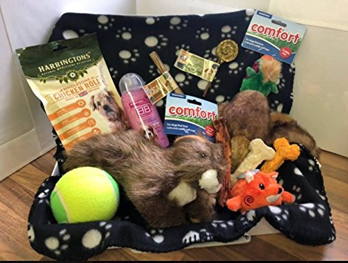 Large Dog Toys & Treats Hamper