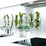 Küchenrückwand Kräuter Glas Premium Hart-PVC 0,4 mm selbstklebend - Direkt auf die Fliesen, Größe:220 x 60 cm