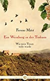 Ein Weinberg in der Toskana: Wie mein Traum wahr wurde - Ferenc Máté
