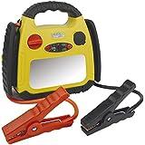 Brüder Mannesmann Werkzeuge Starthilfe für Auto, Motorrad, Quad, Kart, Boot, 1 Stück, M01776