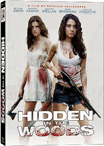 Hidden in the Woods - 3-Disc Limited Uncut Collector's Edition auf 444 Stück/Mediabook Cover B [Blu-ray]