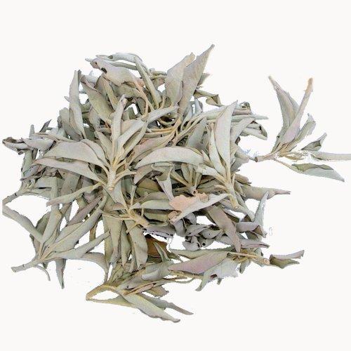 Reinen Salbei (100 Gramm Premium 'cluster Qualität' weißer Salbei lose - zumeist kleine reine natürliche Salbei Büschel verpackt zu je 50 Gramm in hochwertigen aromaschonenden Beuteln - zum Räuchern / Räucherwerk: -- von Native-Spirit -- white sage)