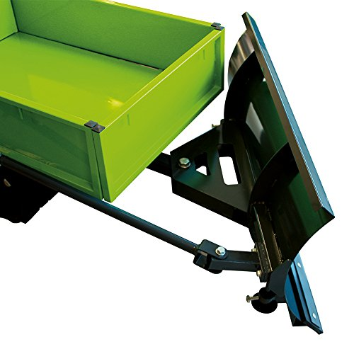 Miniraupendumper 4,8 kW / Ladekapazität 300 kg / inkl. Schneeschild -