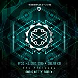 The Protocol (Sonic Entity Remix)