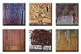 Time4art Gustav Klimt Print Canvas 6 Bild 6 x 30x30cm Baum des lebens Tree of Life Lebensbaum - Stoclet-Frieze, Oberösterreichisches Bauernhaus, Apfelbaum II, Buchenwald I, Birkenwald, Tannenwald auf Keilrahmen Leinwand