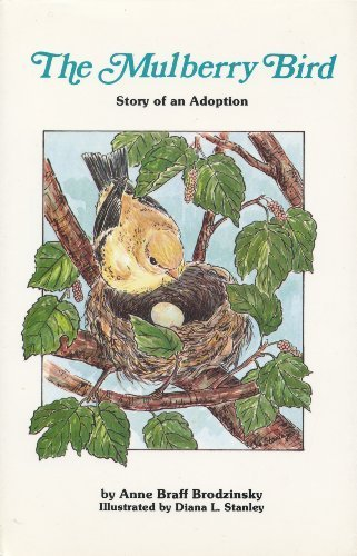 the-mulberry-bird-story-of-an-adoption