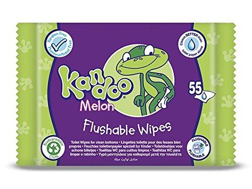 Kandoo Melone Nachfüllpack Windel-Pack 0F 12, insgesamt 660Tücher