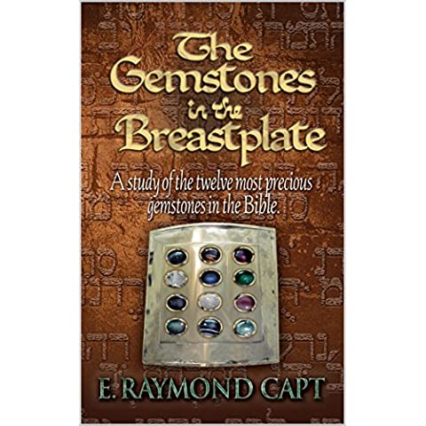 THE GEMSTONES IN THE BREASTPLATE (English Edition)