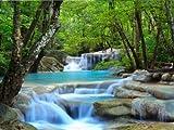wandmotiv24 Fototapete Vliestapete Wasserfall im Wald KT485 Größe: 300x260cm Fluss Bäume Wasser