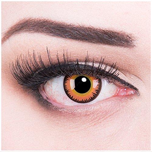 Meralens Orange Werewolf Kontaktlinsen mit Pflegemittel mit Behälter ohne Stärke, 1er Pack (1 x 2 Stück)