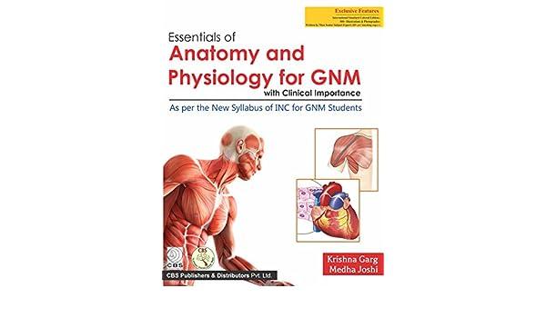 importance of anatomy