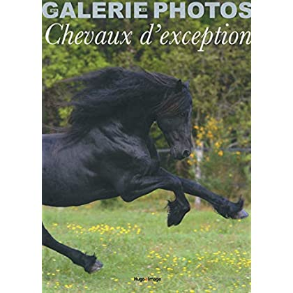 Coffret ma galerie de photos chevaux d'exception