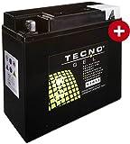 GEL Batterie 51913 BMW R 1100 RT ABS 1996-2001 von TECNO