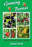 Strawberries, Raspberries, Blackberries, Blueberries, Gooseberries, Redcurrants, Blackcurrants & Whitecurrants.