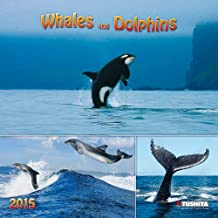 Whales and Dolphins 2015 (Wonderful World)