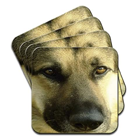 German Shepherd Dog Close Up Of Face Set Of 4 Coasters