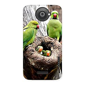 Premium Parrot House Multicolor Back Case Cover for HTC One X