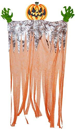 WIDMANN-Kürbis Riesen unisex-adult, Orange, One Size, vd-wdm01417