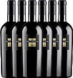 6er Paket - Sessantanni Primitivo di Manduria DOP 2015 - Cantine San Marzano | trockener Rotwein | italienischer Rotwein aus Apulien | 6 x 0,75 Liter