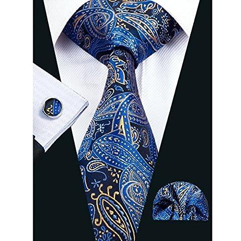 Hi-Tie Elegant Silk & Polyester Paisley Necktie Set Wedding/Business/formal