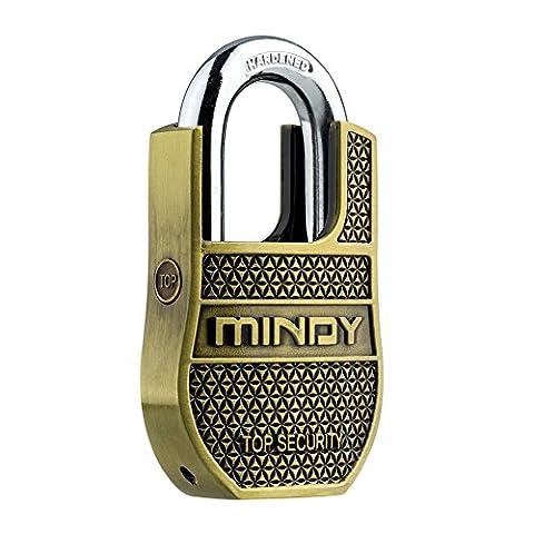 Mindy Heavy Duty Vorhängeschloss Home Security langlebiges Vintage Mode Schloss mit Schlüssel AF8, Gold