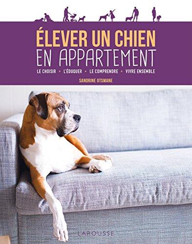 Élever un chien en appartement